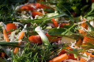 warzywa bogactwo antyoksydantów